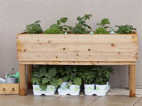 Build A Raised Planter Box by How To Build An Elevated Wooden Planter Box Diy