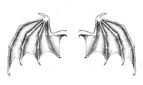 bat wing tattoo on back photos pictures and sketches