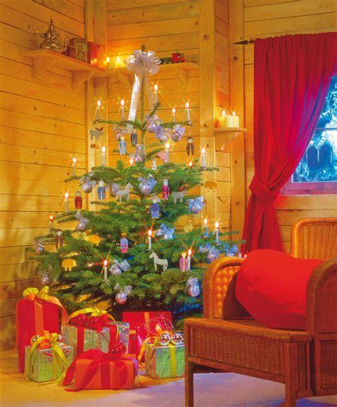 wo weihnachtsbaum kaufen weihnachtsbaum kaufen saisonales selbst de