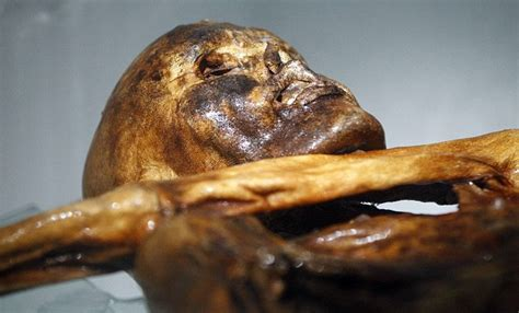 dna scans reveal 5 300 year old mummified iceman had