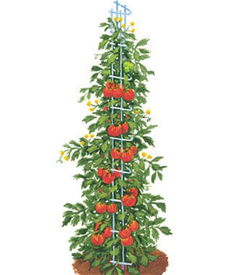Gardeners Supply Tomato Tower Tomato Towers Gardening Supplies And Garden Tools At