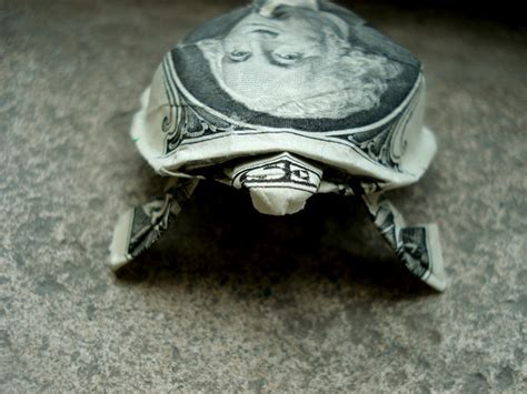 origami dollar turtle the affordables forum exchange free straps and