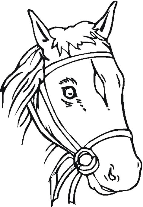 appaloosa horse head coloring coloring pages