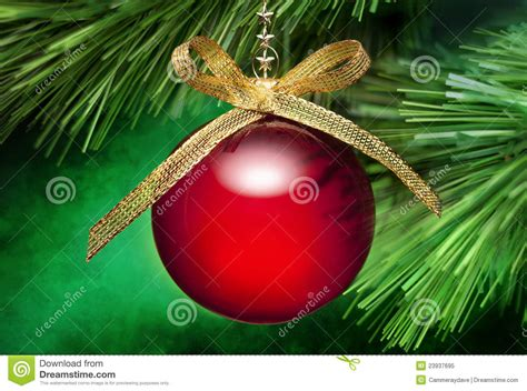ornaments picture tree ornament background royalty free stock
