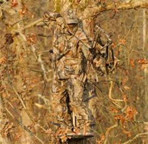best real tree stand 1000 images about on bowhunting bow