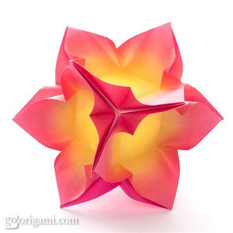 modular flower origami go origami kusudama modular origami