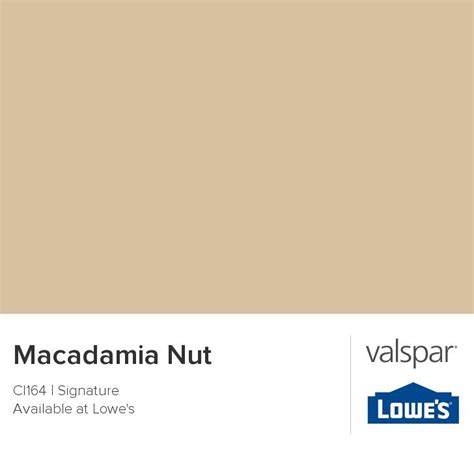 behr paint color macadamia 1000 images about pretty paint colors on