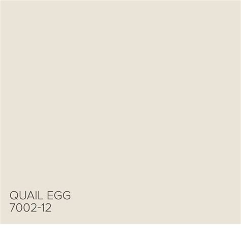 paint color quail 25 best ideas about valspar paint on valspar