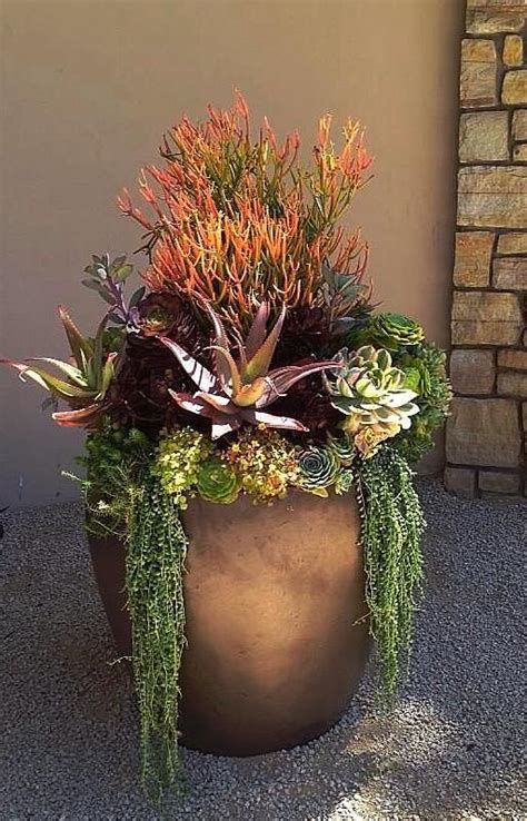 planters for succulents best 25 fall flower pots ideas on fall