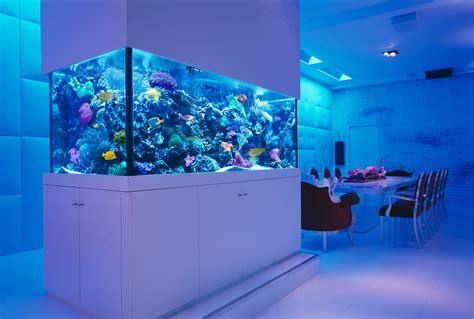 modern aquarium 25 rooms with stunning aquariums decoholic