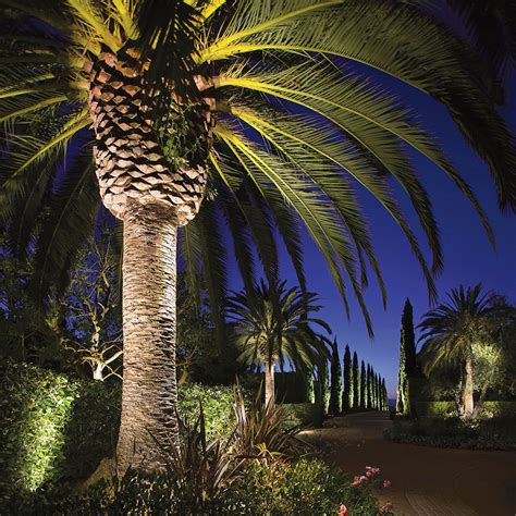 focus led landscape lighting focus landscape lighting focus landscape lighting magic