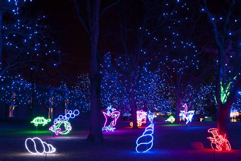 zoo light tickets zoo lights glow packages now on sale news sys con
