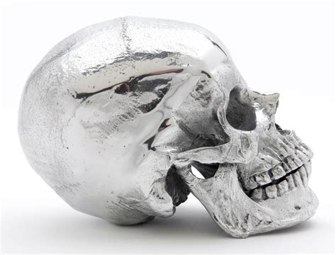 metal skull mca chicago store metal skull