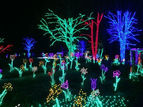 va lights lights in the northern virginia area 2015