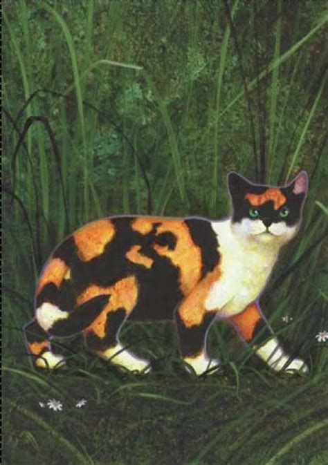 cat painting guide 1278 best images about thunderclan warrior 4 on
