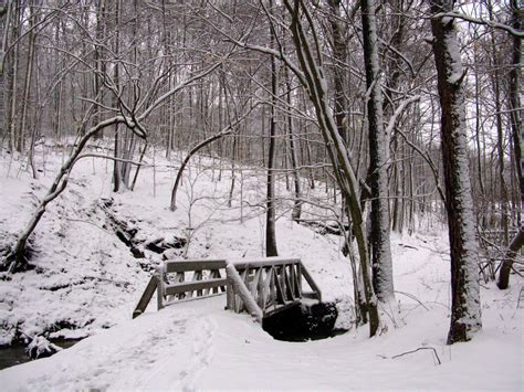 How To Build A Small Cabin In The Woods file winter bridge snow west virginia forestwander jpg