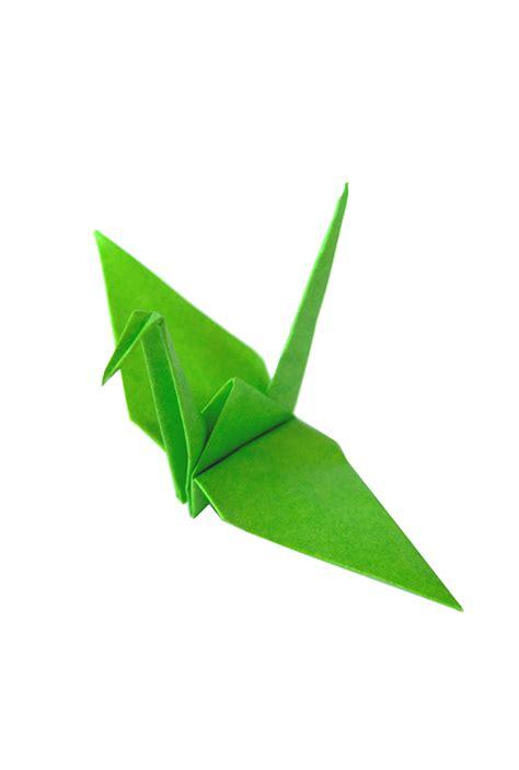 the origami paper shop green origami paper cranes graceincrease custom