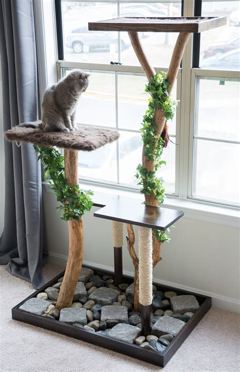 cats real trees make a cat tree using real branches my amazing diy cat tree
