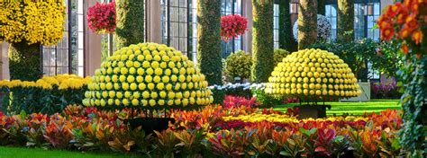 longwood gardens tickets amazing longwood garden tickets 6 longwood gardens