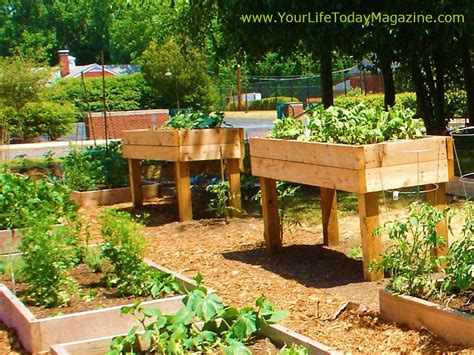 elevated garden ideas raised garden beds ideas for growing images