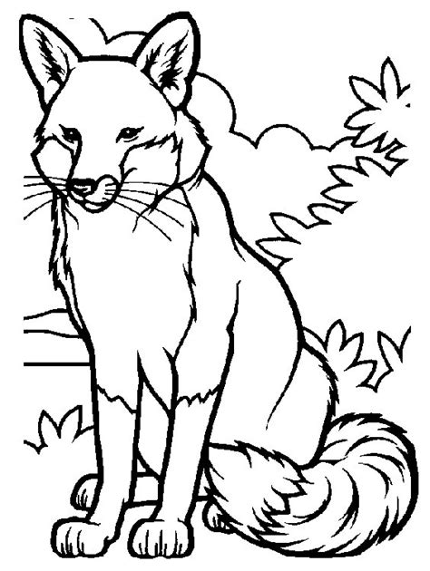 coloring book pictures of animals free coloring pages of animals
