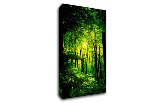 spray paint emerald forest emerald forest walk forest wide panel canvas wide canvas