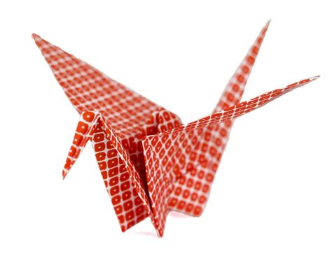 origami moving crane how to self publish a book part 1 getting serious
