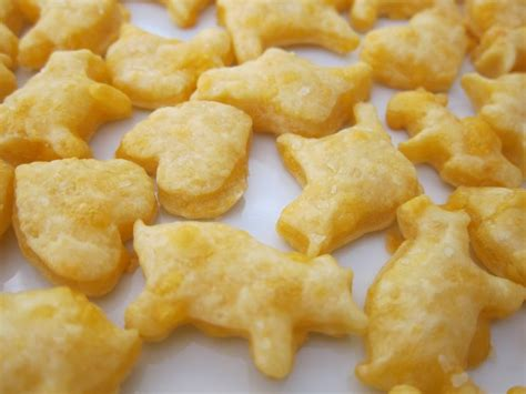crackers for toddlers toddler cheese crackers toddler food