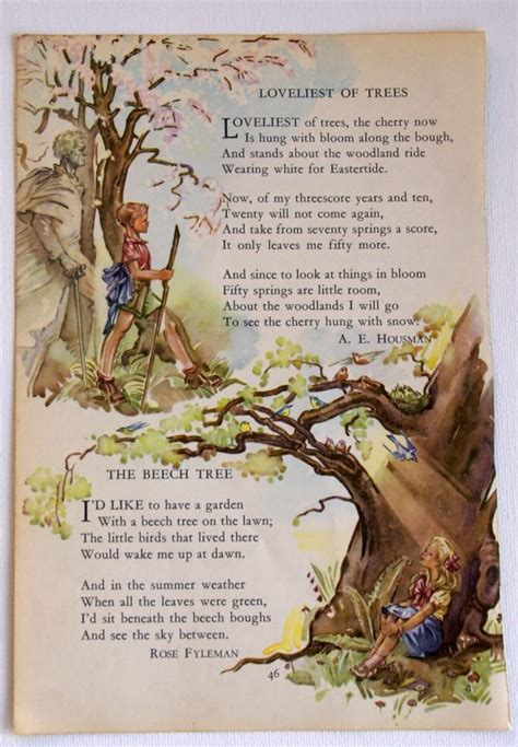 the tree picture book vintage children s book tree illustration with poem by a