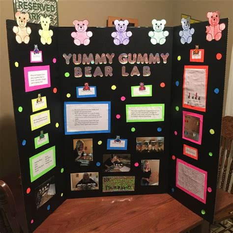 4th grade ideas 25 best ideas about 4th grade science projects on