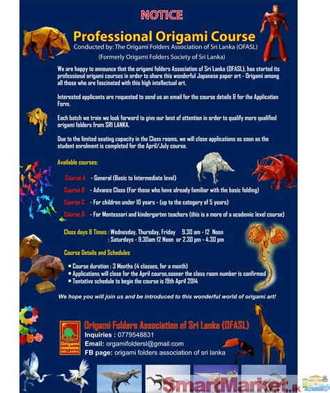 Professional Origami Course For Sale In Colombo
