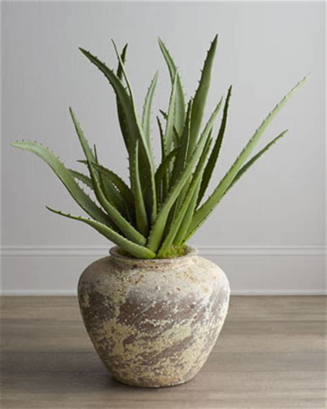traditional plants richard collection faux potted aloe plant