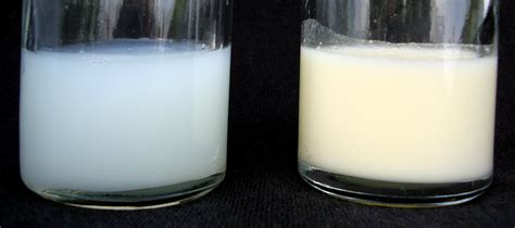 breast milk file human breastmilk foremilk and hindmilk png