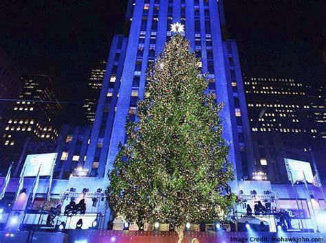 new york city tree 2014 new york city tree 2014 28 images nycdata rockefeller