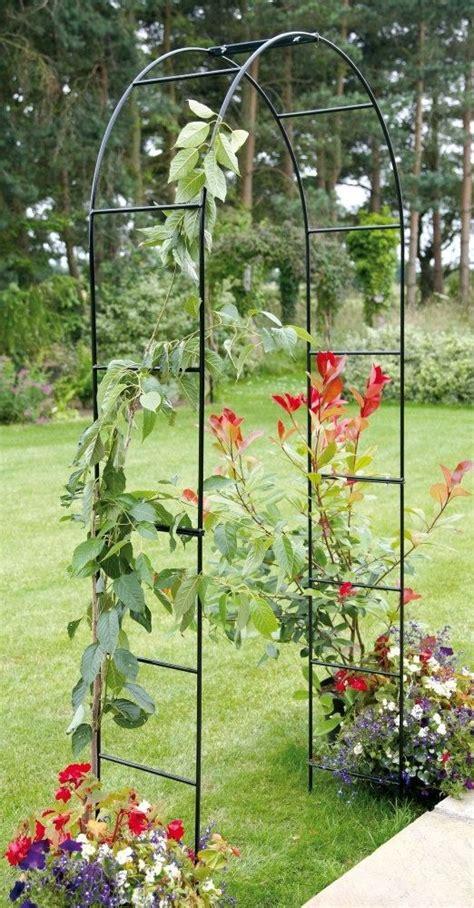 Garden Arch Vines Best 25 Garden Archway Ideas On Garden Arches