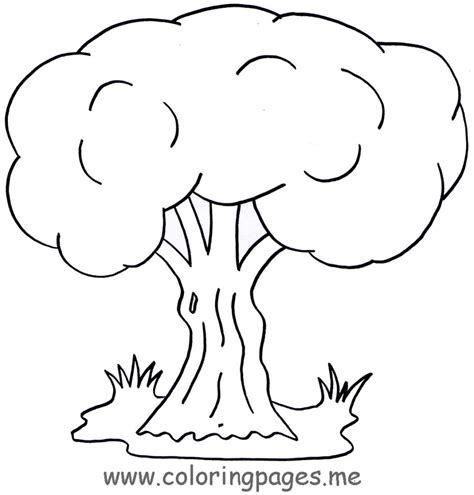 tree color in coloring pages free coloring pages of a tree to colour
