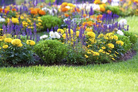 flower gardening how to start a flower garden