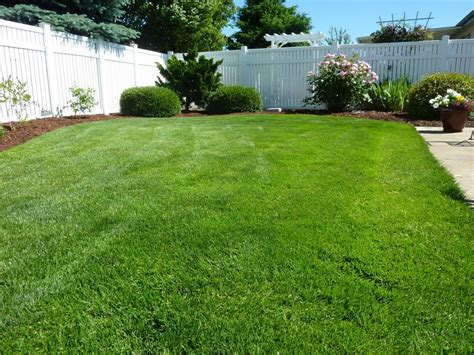 Winter Garden Fl Weather by Lawn Care In Parrish Fl Your Green Team