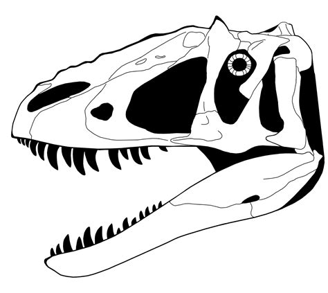 skeletal drawing i o yutyrannus