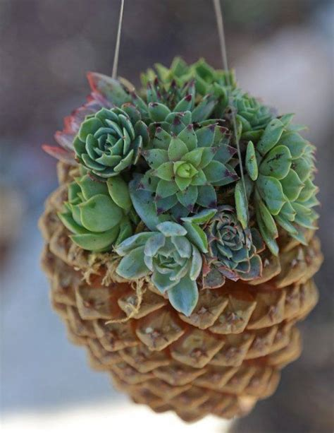pine cone craft projects 15 beautiful pine cone crafts to make stunning home decor