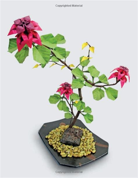 origami bonsai origami bonsai i bonsai இڿڰ