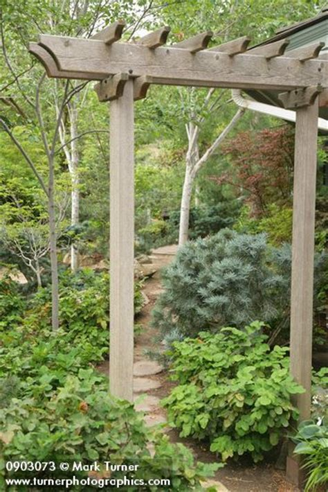 Garden Arbor With Gate Kit 25 Best Arbor Ideas On Garden Arbor Arbors