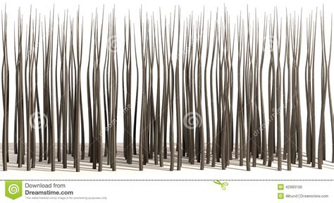 strands of microscopic hair roots stock photo image 42983106