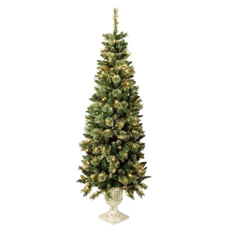 pre lit outdoor tree shop living 5 5 ft indoor outdoor pre lit spruce