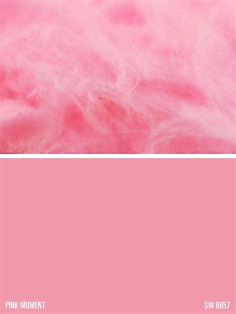 paint colors pink sherwin williams paint color pink moment sw 6857