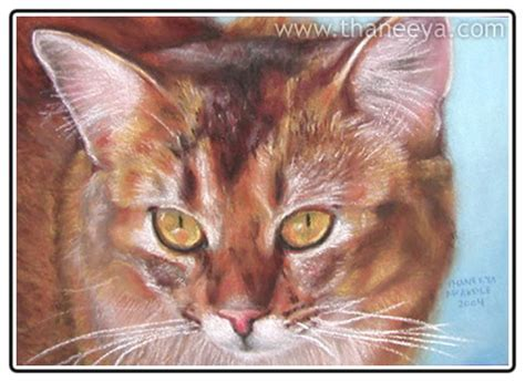 cat painting guide surfaces for pastels detailed guide to pastel paper