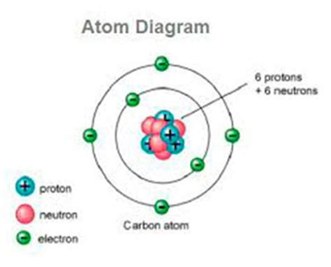 Definition Of Protons Neutrons And Electrons by Protons Neutrons And Electrons Ency123