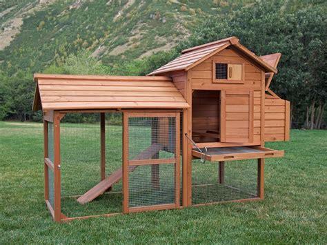 backyard chicken coup backyard chicken coop pictures