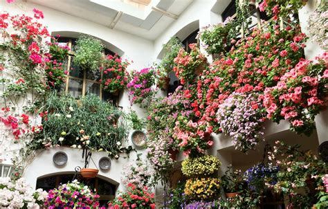 los patios cordoba behind closed doors why may is the best time to visit