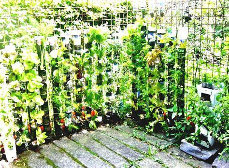 container gardens vegetables container gardening ideas 4 home vegetable garden ideas